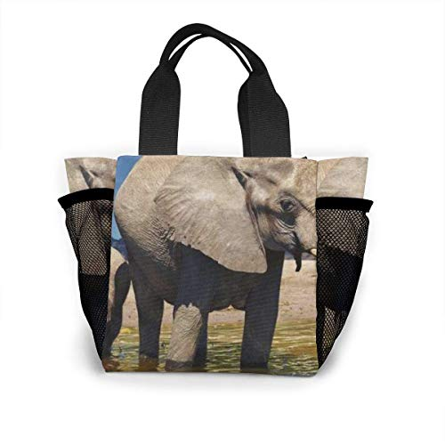 Tote Lunch Bag,Big Ears Elephant Print Large Cooler Bag Container Thermal Cooler Pack Picnic Bag for Women&Men Travel Office Beach