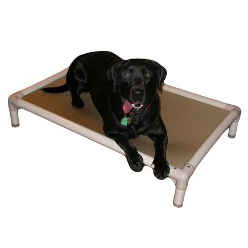 Kuranda Almond PVC Chewproof Dog Bed - Medium...