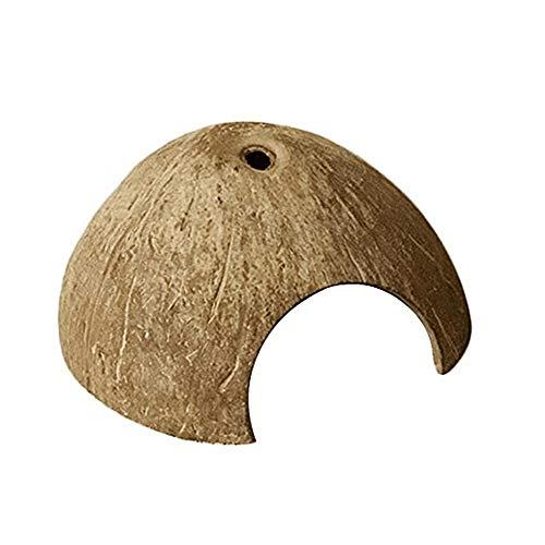 Repti-Unterschlupf für Reptilien, Kokosnussschale, Höhle Versteck für Schildkröte, Spinnen, Skorpion, Eidechse