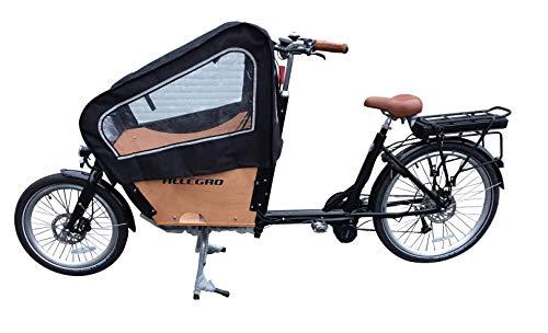E-Bike Lastenfahrrad Allegro E-Cargo Transport Bild 2*