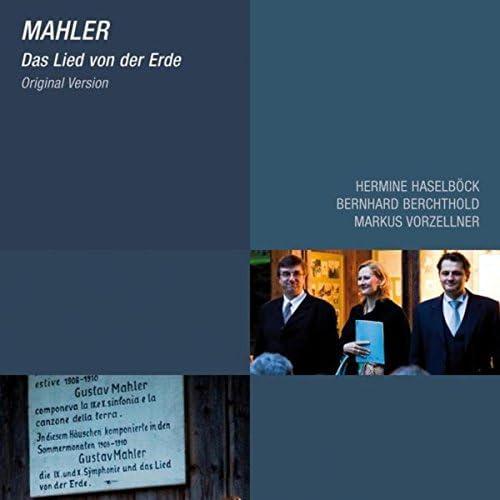 Hermine Haselböck, Bernhard Berchtold & Markus Vorzellner