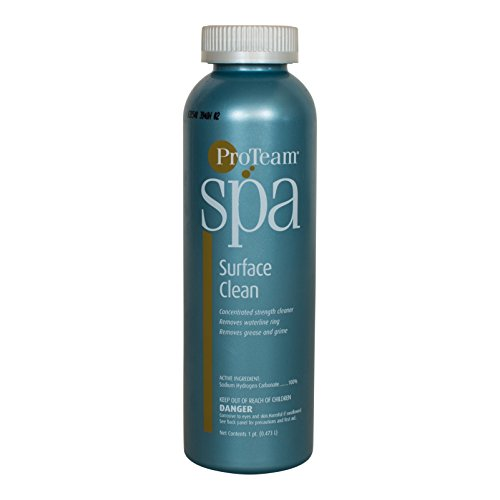 ProTeam Spa Surface Clean (1 pt)