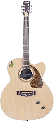 GIVSON ROSE VENUS 6-Strings, Guitar, Right/Left Handed, Brown, With Case