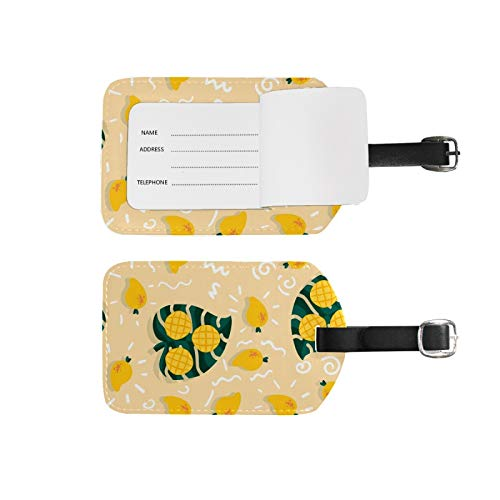 Luggage Tags Address Name Holder,2Pcs Portable Identifier Label Set Checked Card Bag Decoration Travel Gear Gifts,Tropical Fruits Mango for Suitcases Bags