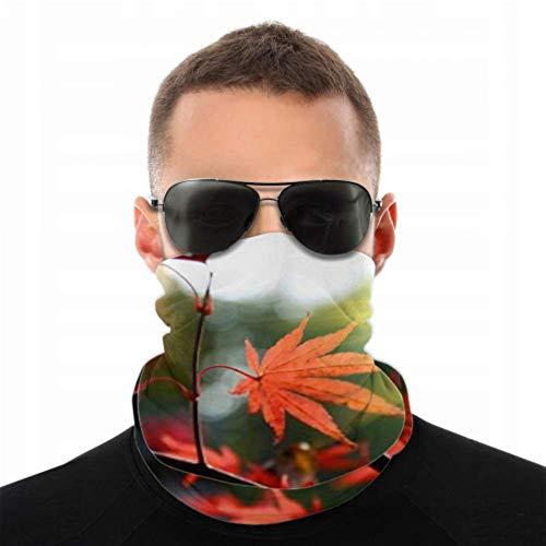 HJHJJ Stirnbänder für Männer Frauen...