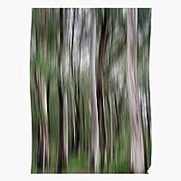 Forest Trees White Abstract Australia Grey Green Motion El póster de decoración de interiores más impresionante y elegante disponible en tendencia ahora