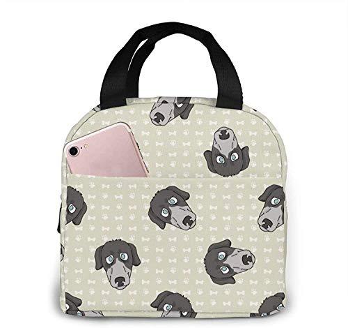 Linda bolsa de almuerzo reutilizable Greyhouse Race Dog Face, bolsa de almuerzo aislada y fresca, adecuada para viajes de picnic en la oficina y la escuela