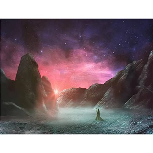 Paint by Numbers Kits Magician Standing in sci fi Landscape with Rock Valley Star and sunDIY Oil Painting for Beginner Canvas Painting Fine Art Art for Home Art Wall with Framed- 20X16 in