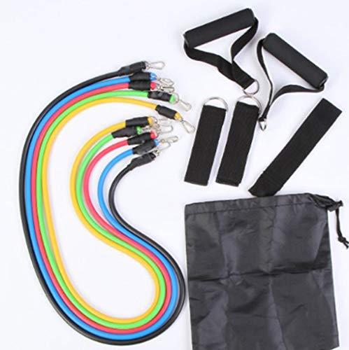 Widerstandsbänder fit Fitnessband Resistance Bands Set,darunter 2 Griffe, 2 Fußabdeckungen, 1 Sicherheitstürschnalle, 1 Netztasche und 5 Kordeln, Pilates-Bauchfitnessübungen für Familien- und Outdoor