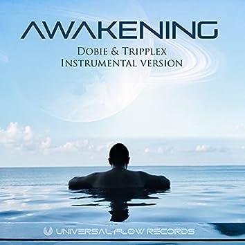 Awakening (Instrumental)