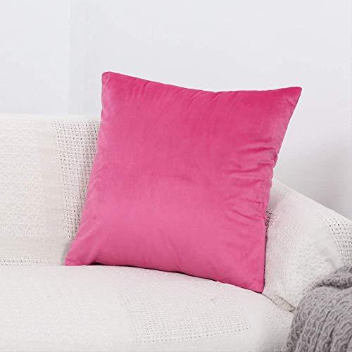XSHIYQ Velvet Cushion Cover Pillow Cover Pillow Case Home Decorative Sofa Throw Pillows 60cmX60cm 33