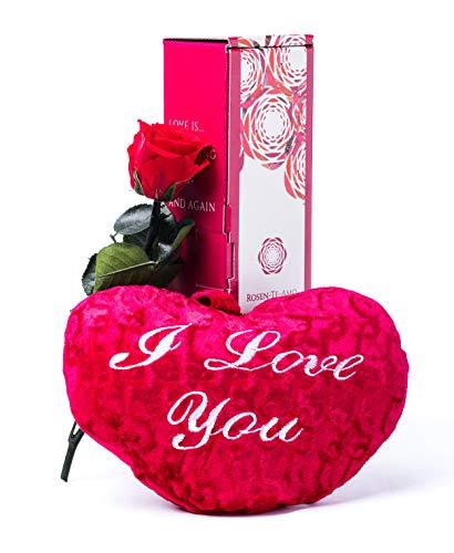 Rosen-Te-Amo, rosa eterna con tallo (27 cm), corazón de peluche (25 cm) y tarjeta felicitación descargable. Flores preservadas: san valentin regalos o decoracion hogar