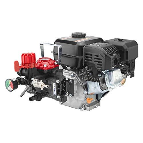 Motobomba pulverizadora AR 252 HP 6 – kW 4,5