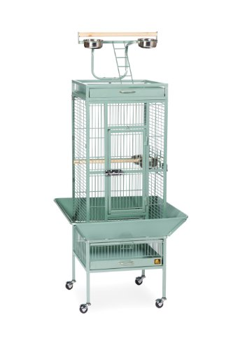 Prevue Hendryx Pet Products Wrought Iron Select Cage - Sage, 18'' x 18'' x 57''