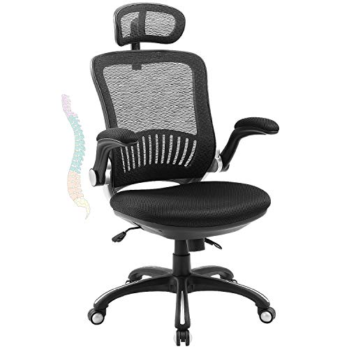 ZLHECTO Office Desk Chair, High Back Mesh Chair Hold Up to 300IBS, Ergonomic Computer Chair with Adjustable Headrest, Backrest, Seat Height &Flip-up Armrests, Executive Task Chairs for Conference Room