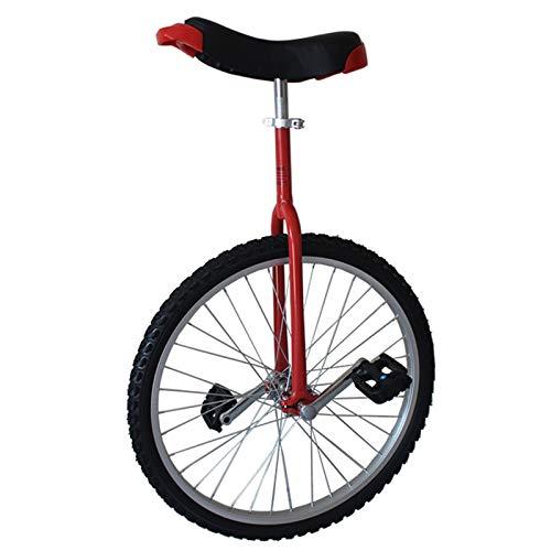 AHAI YU Kinder Einrad Großes Gleichgewicht Einradfahrrad 24 Zoll, für Erwachsene/Teen/Mädchen/Jungen, weibliche/männliche Einrad mit Legierungsrand und Verstellbarer Sitz, bestes Geburtstagsgeschenk