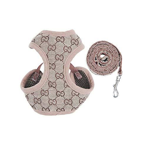 Imbracatura e Piombo per Cuccioli, Confortevole Regolabile Pettorina e Guinzaglio per Cani Taglia Piccola in Maglia Traspirante (XS)