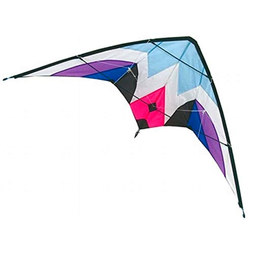 marion10020 Kompletter Lenk Drachen Sport-Lenkdrache, 1,60 Meter Spannweite, inkl. Schnur, blau/lila, Flugfertig