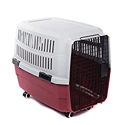 airline approved portable dog crate by the Favorite brand