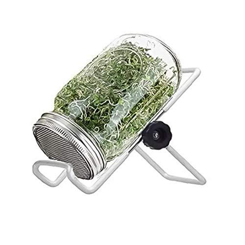 Sanfiyya Brotación Kit Tarro para germinar Plantas de semillero Cubierta Tipo germinador para Hacer los brotes Mason Jar a la germinación brócoli, judías y más - Incluye un Frasco, drenar el S