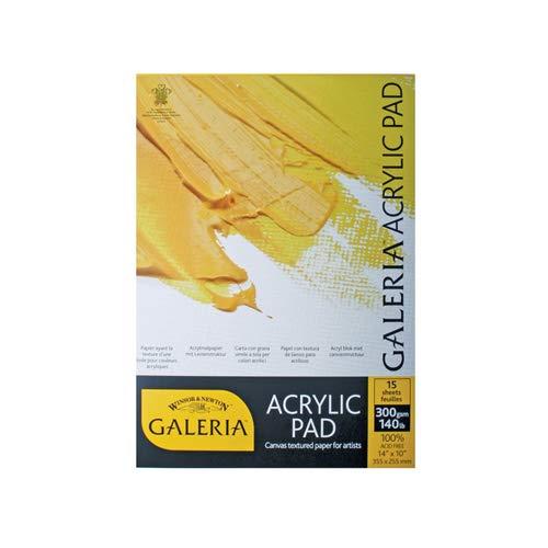 Winsor & Newton Carta per Colori Acrilici Galeria - Dimensione 51x41cm - Blocco Incollato 1 Lato - 15 Fogli da 300gr