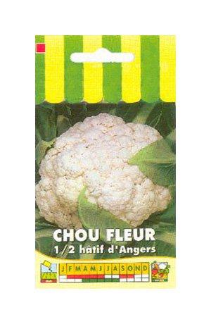 Les Graines Bocquet - Graines De Chou Fleur Extra Hâtif D'Angers - Graines Potagères À Semer - Sachet De 1Grammes