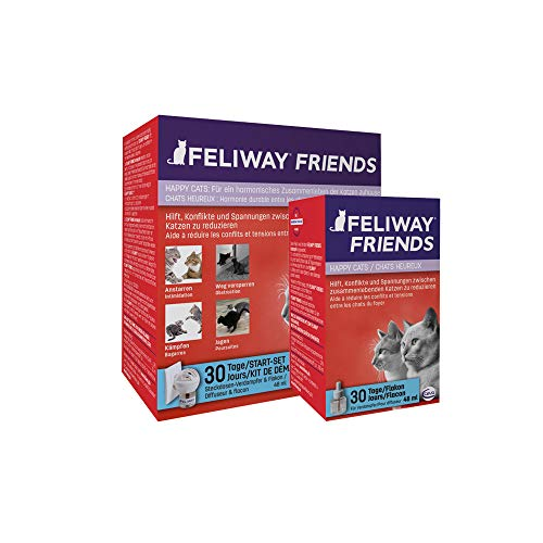 FRIENDS Start Set