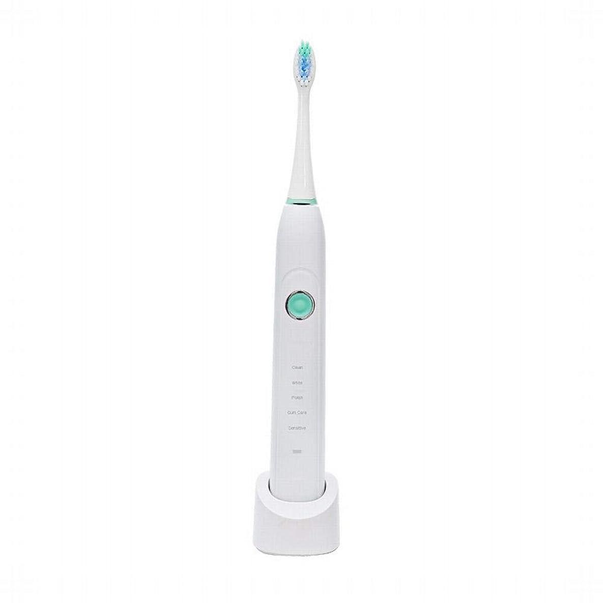 パフ倍率陽気なBOBIDYEE 電動歯ブラシ自動怠zyな音波成人充電式電動歯ブラシ歯ブラシヘッド電動歯ブラシヘッドフィリップスソニッケアー歯ブラシヘッド (色 : White)