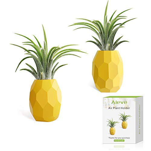 AIEVE 2 Pack Air Plant Holder Air Plant Hanger Air Plant Stand Pineapple Planter Tillandsia Holder Tabletop Display Geometric Planter with Magnet for Hanging Air Plants Indoor Wall Decor, Small