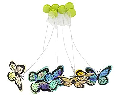 All for Paws Interactive Cat Butterfly Flutter Replacements Cat Fun Playing Toy, Re-Fill - 6 Pack by AFP