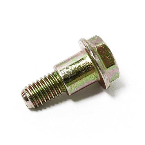 Ersatzteil für Benzinmotor Schraube für Handstarter