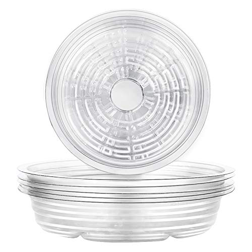 wavraging Clear Plant Saucers, 6 Pack of 20cm (8inch), Flower Pot Drip Trays for Indoor & Outdoor Plants Garden Saucers Plant Pot Saucer Trays - Assorted Sizes for Medium Pots