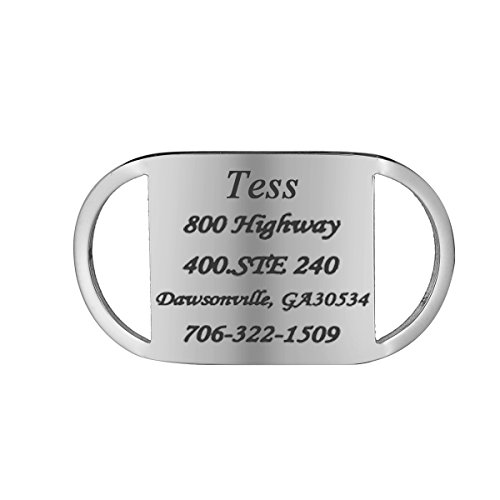 HOUSWEETY Medaille d'Identification en Acier Inoxydable pour Animaux Pet Tag Engraving + Service Gravure Personnalisee Offre