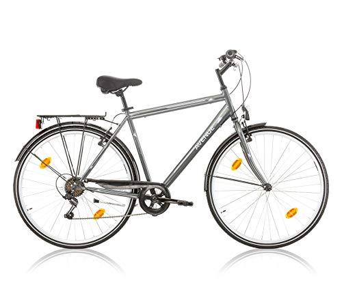 Frank Bikes 28 Zoll Herren Fahrrad CITYFAHRRAD HERRENFAHRRAD CITYRAD HERRENRAD Rad Beleuchtung Shimano 6 Gang Avenue Herren GRAU