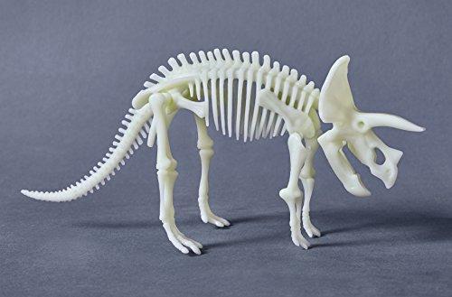HABA 303445 - Terra Kids Glow-in-the-dark-Triceratops | Dinosaurier-Skelett zum Zusammenbauen für Kinder ab 6 Jahren | mit Anleitung | 10-teiliges Dino-Modell aus Kunststoff leuchtet im Dunkeln