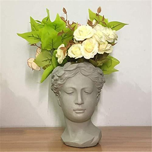LKJH Jardinière succulente avec tête de déesse Grecque, Statue de Visage Pot de Fleur pour la décoration de Bureau à Domicile Cadeau Jardinier Gris 21x19 cm (8x7 Pouces)