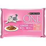 Purina ONE comida húmeda para gato, gatito, junior, gatos h