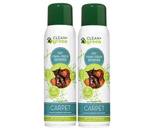 Pet Carpet Cleaner Spray and Odor Eliminator, Unscented, 14 oz. - Eco-Friendly, Safe Stain Remover for Cat or Dog Messes with Natural Propellant - Professional Carpet Cleaners for Rugs, Sofas - 2 Pack