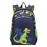 willikiva Preschool Waterproof Backpack for Toddler Boys and Girls Kids Bags Kindergarten Backpack (Dinosaur)