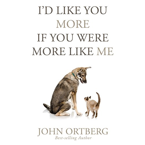 I'd Like You More If You Were More like Me audiobook cover art