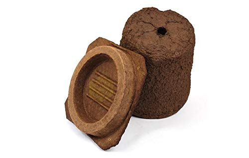 Blythewood Bee Company Wood Pulp Honeybee Swarm Trap