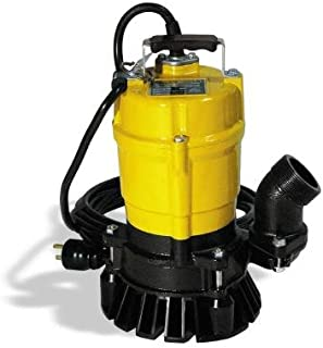 Best 2in electric water pump Reviews
