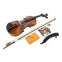 パフォーマンスのためのバイオリン愛好家のためのプロのメープルバイオリン(AV-04 Bright 4/4 Violin)