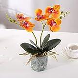 Asvert Bonsai de orquídeas Phalaenopsis de Flores Artificiales Amarillas con jarrón de...