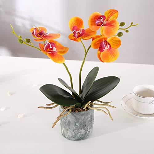 Asvert Bonsai de orquídeas Phalaenopsis de Flores Artificiales Amarillas con jarrón de cerámica(Amarillo)