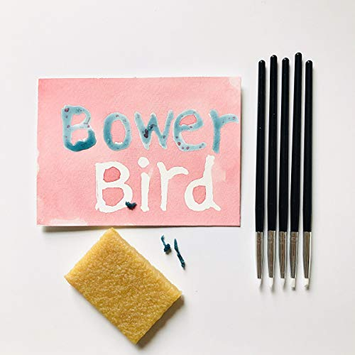 Bower Bird 5 Pcs Silicone Pen Glue Residue Eraser Set for Watercolor Leave Blank to Block | Art Ruling Pen for Clay Sculpting, Fondant Carving and More,Adhesive Remove Eraser Rubber Cleaning Block