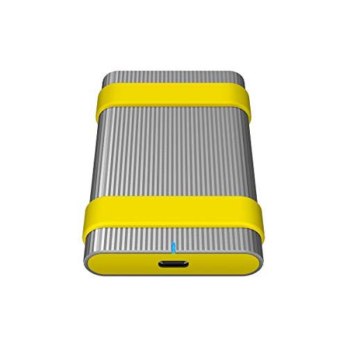 Sony Sl-C1 Externe SSD-Festplatte (1 TB, bis 520Mbps/s Schreiben, Staub- und Wasserdicht (IP67), USB 3.1 Typ-C, inkl. Etiketten und Gummiband, AES 256-Bit-Verschlüsselung), Aluminium Silber