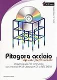 Pitagora Acciaio. Software professionale. Progetto e verifica di strutture con il metodo FEM secondo EC3 e NTC 2018. Con CD-ROM