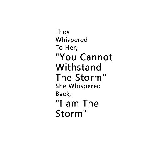 Home Find Mirror I am The Storm Wall Decals Quotes Inspirational Motivation Signs Wall Stickers Home Decor Vinyl Decor DIY Art Murals for Office Study Rooms 15.7 inches x 24 inches