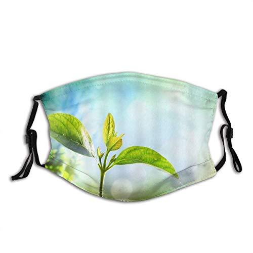 Gesichtsmasken Pflanzensämling Keimen Botanical Budding im Boden unter strahlendem Sonnenschein Frühling Natur Sturmhaube Mund Bandanas mit 2 Filtern